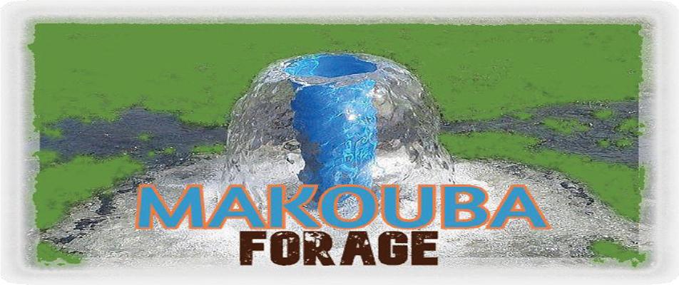 Makouba Forage